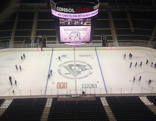 Consol-Arena-Penguins-on-ice